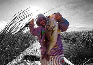 BASS-Angler