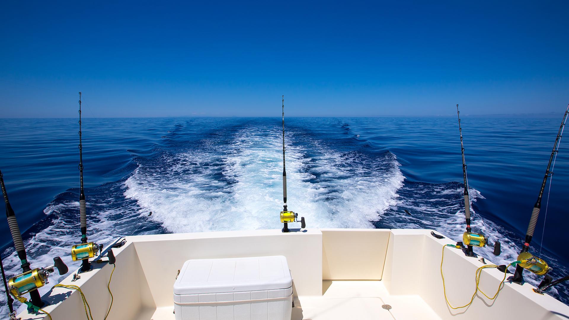 Boat Rear