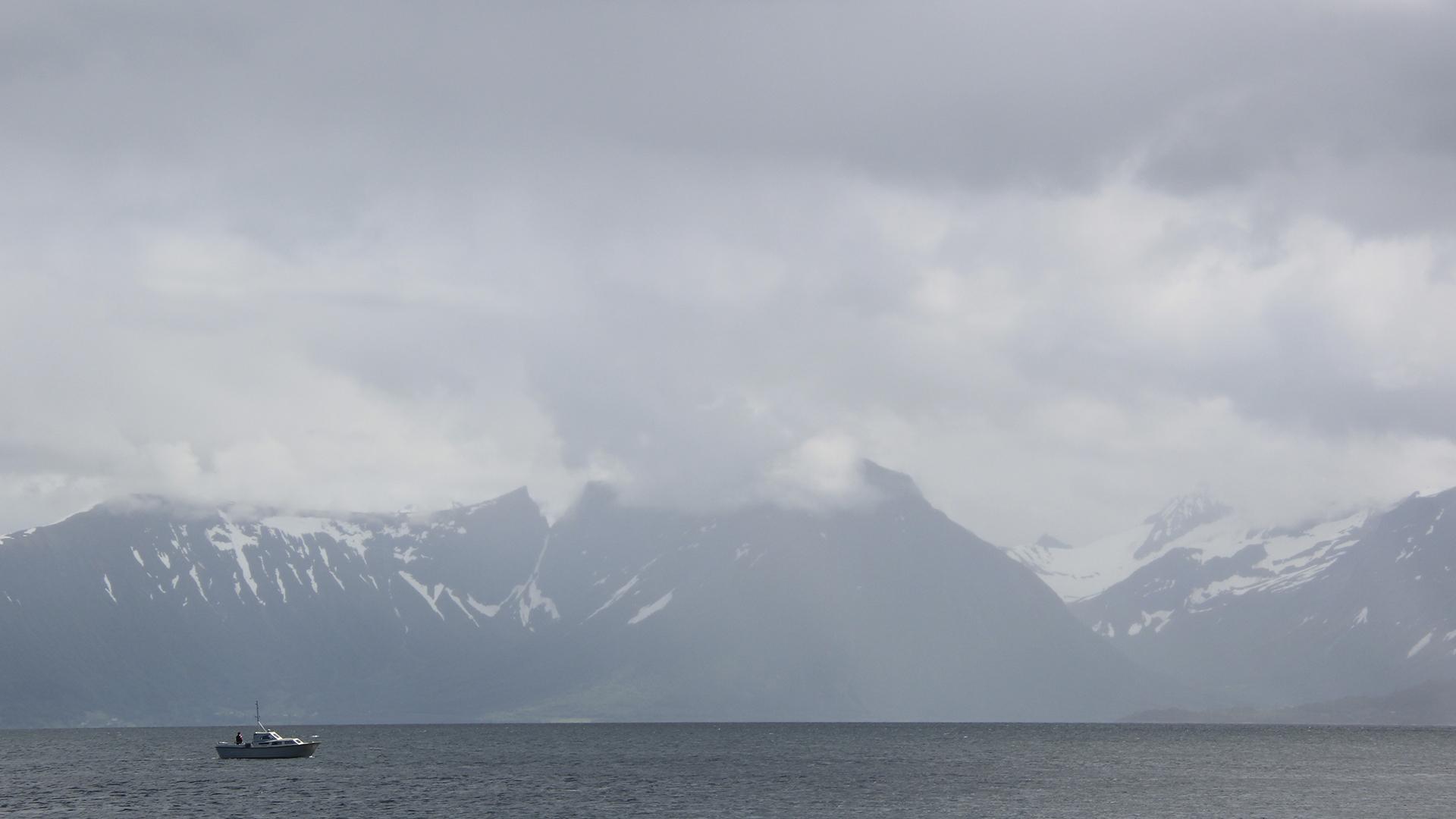 Boat - Fjord 2