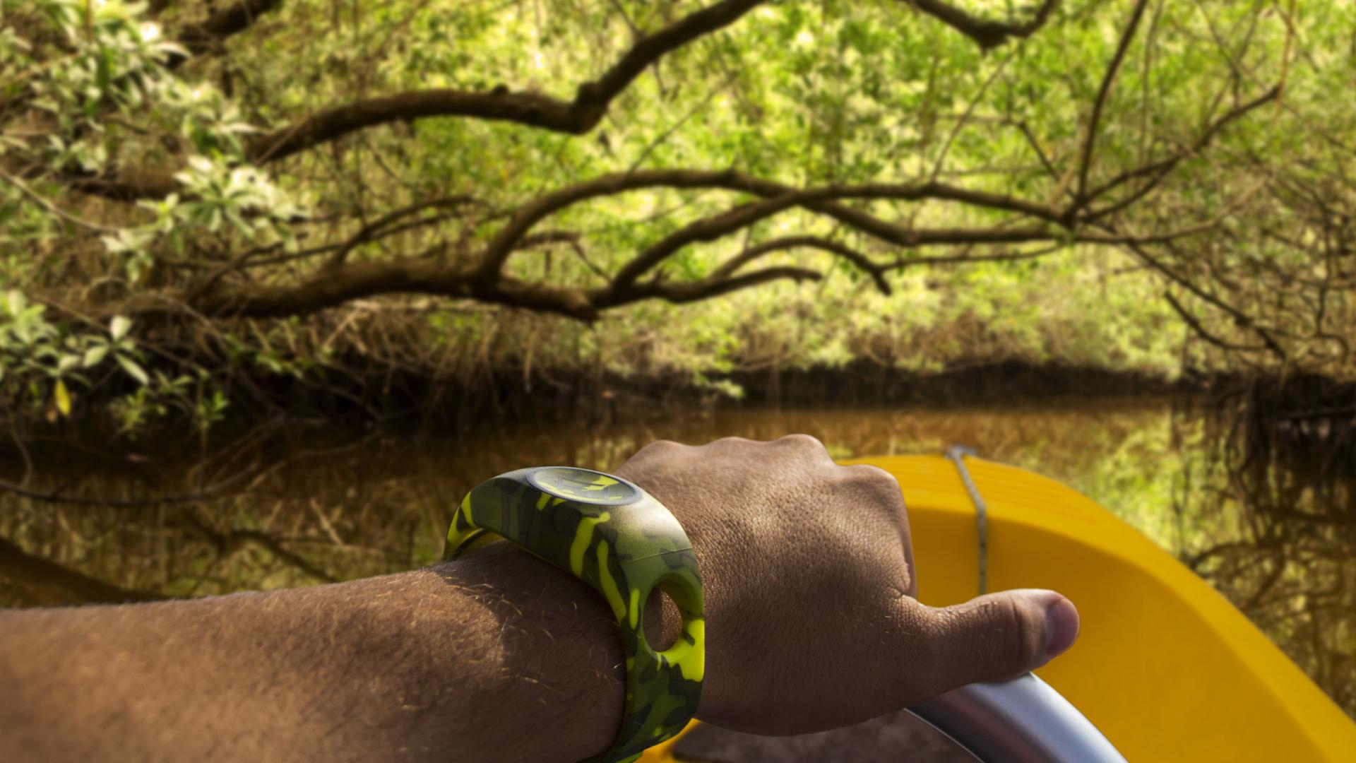 xBAND Everglades